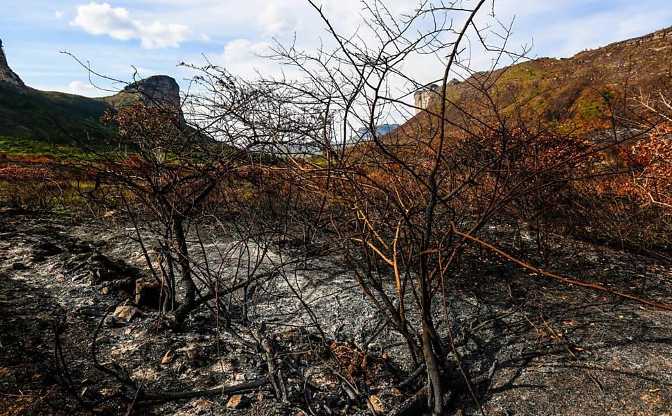Senadora destina recursos para combate a incêndios na Chapada