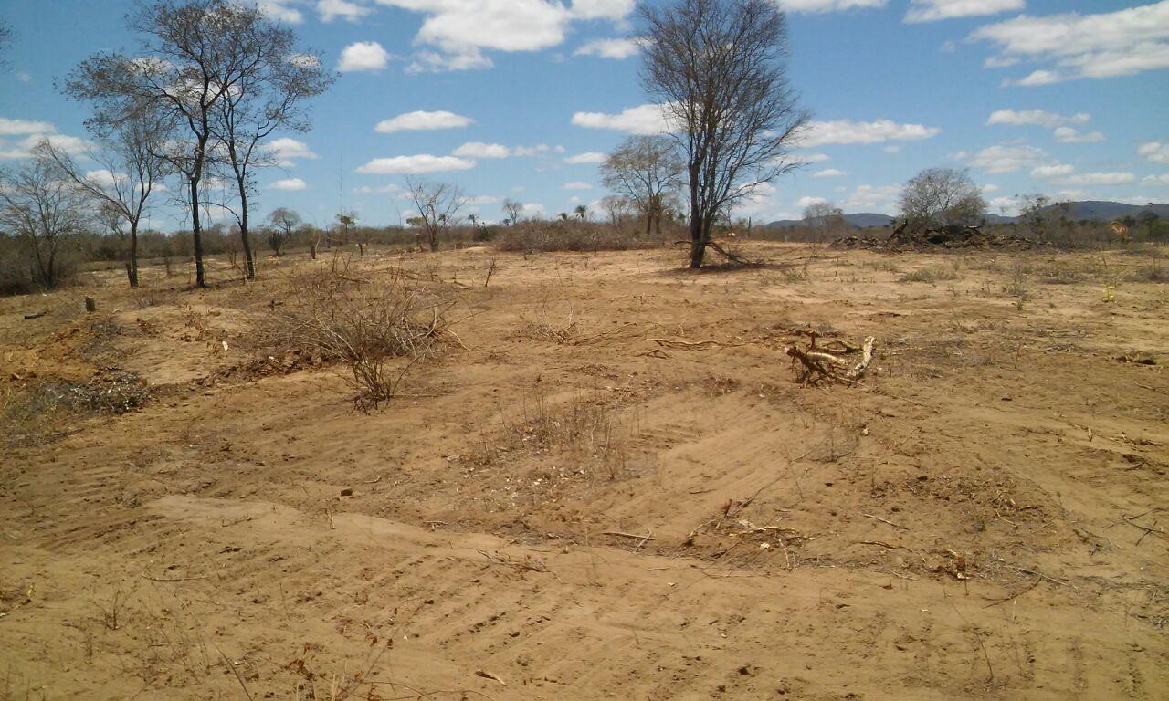Prefeitura de Boa Vista do Tupim convoca interessados em receber terrenos para realizar inscrição