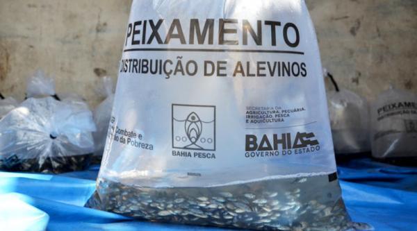 Itaberaba: Prefeitura vai distribuir meio milhão de alevinos na  3ª ExpoParaguaçu 2019.