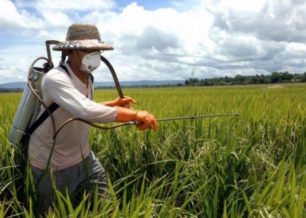 Nos últimos 12 anos, mais de 40 mil pessoas foram intoxicadas com agrotóxicos no país.