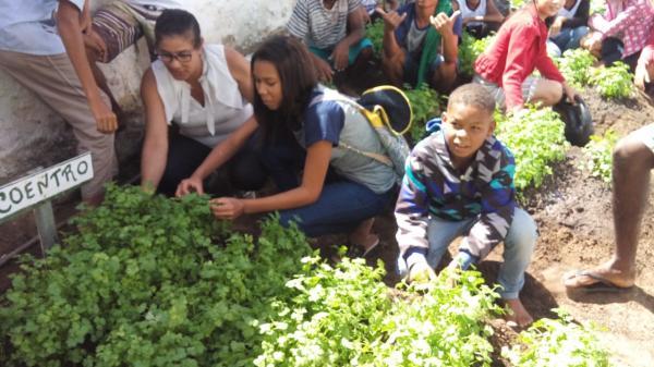 Alunos da Escola Dionisio Azevedo no povoado de Santa Luzia colhem hortaliças do projeto Horta na Escola