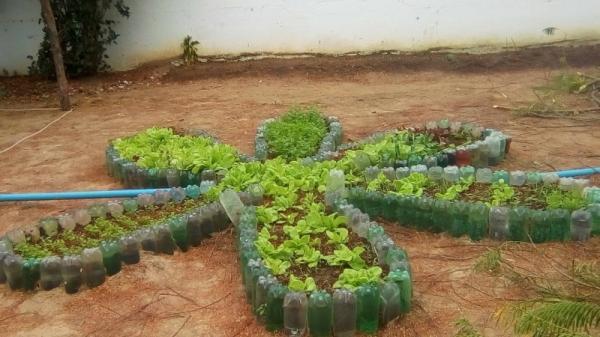 Curso de olericultura visa a produção de hortas no Assentamento Beira Rio
