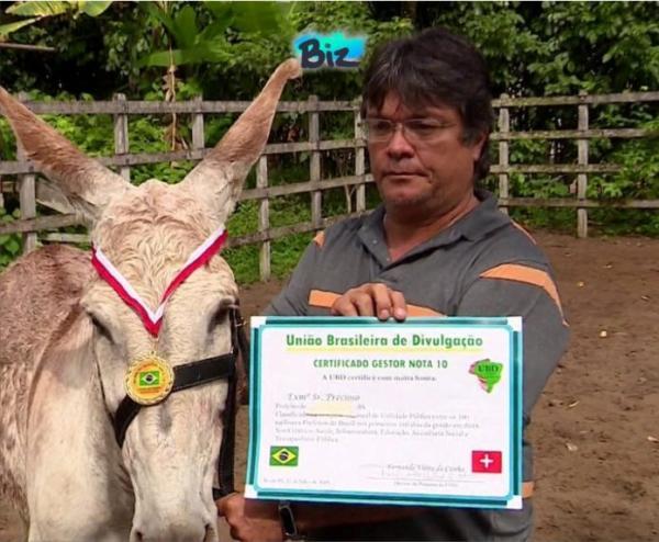 Gestores da Bahia são punidos por compra de diplomas de mérito em Instituto que premiou um jumento