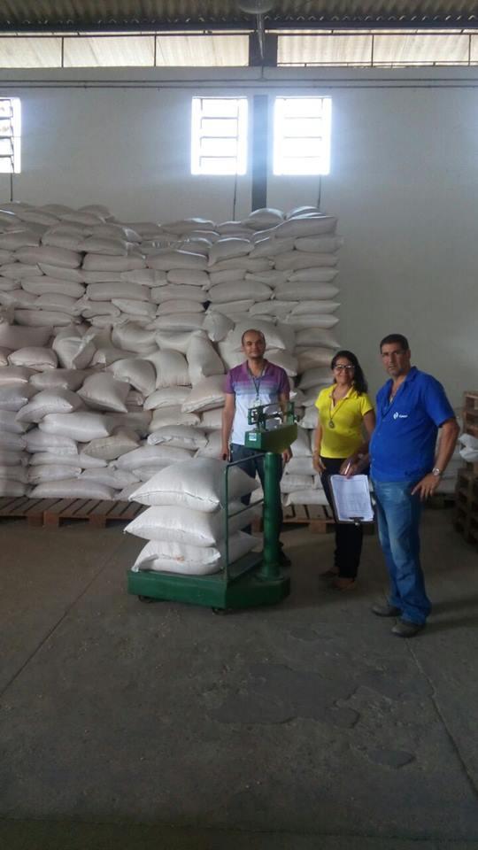 Prefeitura de Iaçu vai distribuir sementes de milho para produtores rurais